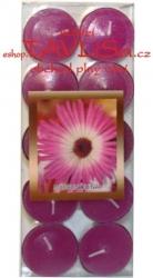 vonné čajové svíčky 10ks Květinová vůně Rentex