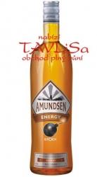Energy 17,7% 1l Amundsen